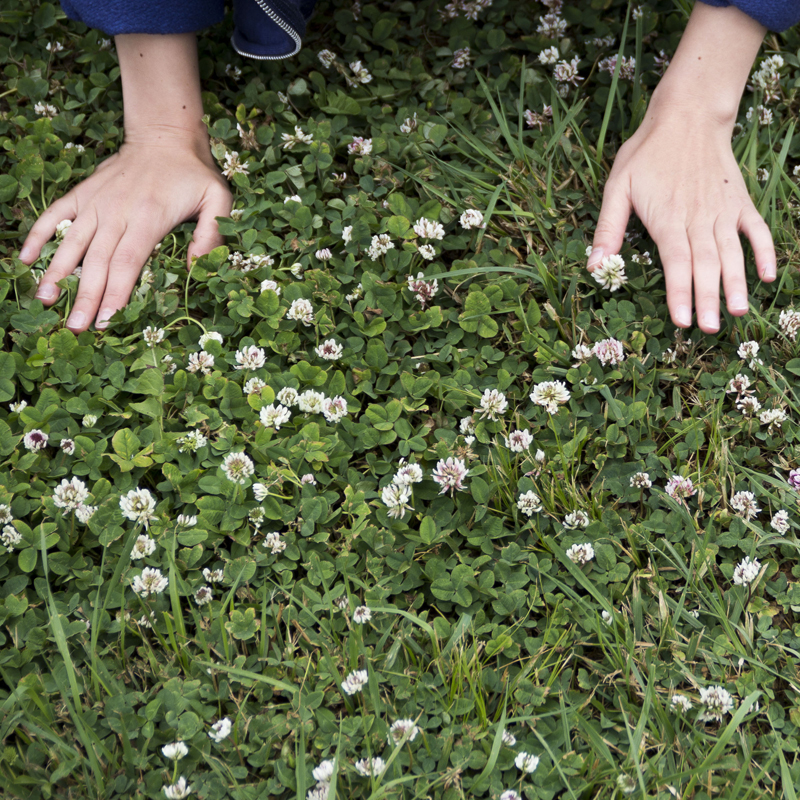 Maria V. Garth Photograph of hands on the ground